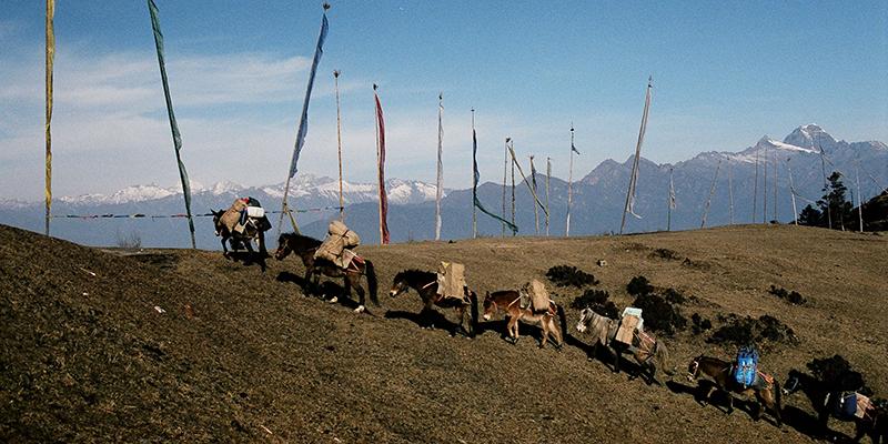 Himalayan Explorer with Bumdra Camp – 7 Nights